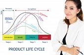 Постер, плакат: Product Life Cycle