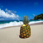 foto of pina-colada  - Pina colada on caribbean beach of Atlantic ocean - JPG