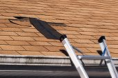 pic of wind blown  - Fixing damaged roof shingles - JPG