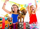 picture of chihuahua  - girl friends party dancing with presents and puppy chihuahua dog in birthday - JPG