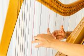 picture of celtic  - Close up hands playing celtic harp - JPG