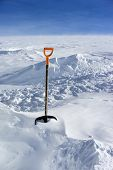 image of snow shovel  - Snow shovel in fresh powder snow - JPG