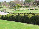 foto of mahatma gandhi  - Beautiful park on sunny day in Raj Ghat New Delhi - JPG