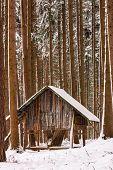 stock photo of deer rack  - beautiful hay rack in the winter forest - JPG