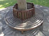 stock photo of pews  - Circular bench pathway photographed at Sidmouth in Devon - JPG