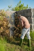 image of prunes  - Agricultural worker setting fire to pruned branches inside a burner made of concrete blocks - JPG