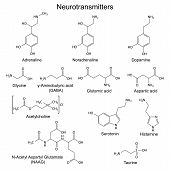 picture of structure  - Structural chemical formulas of basic neurotransmitters - JPG