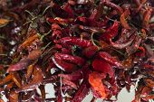 picture of chillies  - red chilli peppers in a local market - JPG
