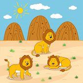 pic of mountain lion  - Vector illustration  - JPG