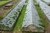 picture of hail  - Abandoned greenhouses damaged and destroyed by the hail - JPG
