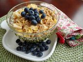 foto of cereal bowl  - A bowl of breakfast cereal topped with blueberries - JPG