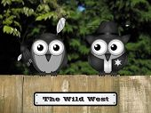 stock photo of bird fence  - Comical United States Wild West Native American and sheriff birds perched on a timber garden fence against a foliage background - JPG