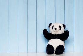 foto of panda  - old vintage panda soft toy on the bookshelf in the children - JPG