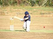 picture of cricket bat  - Schoolboy cricket player having a go at batting - JPG