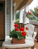 image of front door  - a front porch of a house with flowers - JPG