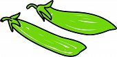 picture of mange-toute  - mange tout pea pods isolated on white drawn in toddler art style - JPG