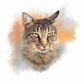 Cute Cat. Watercolor Portrait Of A Cat. Drawing Of A Cat With Green Eyes Executed In Watercolor. Goo poster