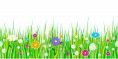 Spring Grass And Flowers Borders. Seamless Pattern Easter Decoration With Spring Grass And Meadow Fl poster