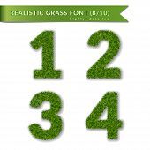 Grass Numbers 1 2 3 4. Green Numbers One, Two, Three, Four Isolated On White Background. Green Grass poster