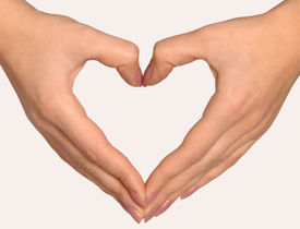 picture of hand heart  - hands - the shape of heart on white background ** Note: Slight graininess, best at smaller sizes - JPG