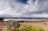 pic of square mile  - Kielder national park has the largest man - JPG