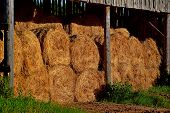 Dry Baled Hay Bales Stack, Rural Countryside Straw Background. Hay Bales Straw Storage Shed Full Of  poster