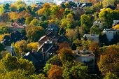 Picturesque Autumn View Over Trees And Houses In Budapest, Taken From Gellert Hill Citadel, Budapest poster