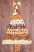 stock photo of pecan tree  - Set of different varieties of nuts in the form of a tree with a gold bow at the top - JPG