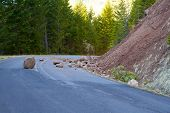 stock photo of mudslide  - This national forest road is blocked by a land slide of rock and debris to where it is a hazard for drivers in cars - JPG