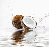 cracked coconut with big splash, isolated on white