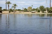 picture of cortez  - City lake in Cortez park Phoenix Arizona - JPG