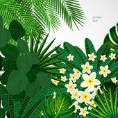 Eps10 Floral design background. Plumeria flowers and tropical leaves.