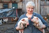 stock photo of animal husbandry  - Adult woman keep in the hands of two little pigs - JPG