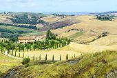 stock photo of senesi  - Crete senesi characteristic landscape in Val d - JPG