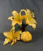 picture of adornment  - a bouquet from yellow lily with adorn pumpkin - JPG