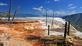 stock photo of mammoth  - Canary Spring of the Mammoth Hot Springs against blue sky in Yellowstone National Park - JPG