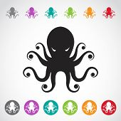 stock photo of octopus  - Vector image of an octopus on white background - JPG