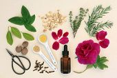 image of wicca  - Love potion ingredients with dropper bottle - JPG