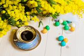 picture of mimosa  - Cup of coffee - JPG