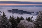 foto of appalachian  - Fraser Fir trees covered in snow dot the high country landscape of the Appalachian Mountains at sunset along the Appalachian Trail on Round Bald
