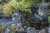 stock photo of crystal clear  - Crystal clear water flows in a stream over a rocky bed - JPG