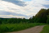 picture of dirt road  - rural sandy dirt road leading past a forest - JPG