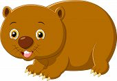 picture of wombat  - Vector illustration of Cartoon wombat isolated on white background - JPG