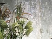 Beautiful Grass Flower For Decoration poster