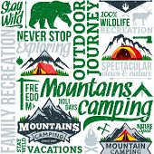 Vector Camping Retro Styled Seamless Pattern Or Background poster