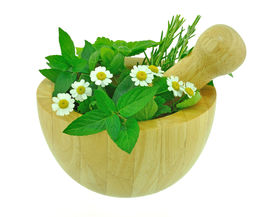 picture of feverfew  - Fresh garden herbs and feverfew plant with wooden pestle and mortar - JPG