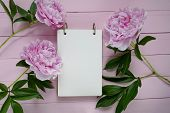 Peony Flowers. Spring Mood Flat Lay.floral Mockup.spring To Do List.blank Notebook, Peony Flowers An poster