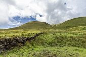Volcanic Rock Wall Borders Pastures On Pico Island In The Azores, Portugal. poster