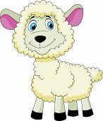 pic of counting sheep  - Vector illustration of Cute sheep cartoon isolated on white background - JPG