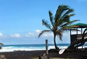 stock photo of shacks  - Rescue board and lifeguard shack sit on the Punaluu Black Sand Beach on the Big Island of Hawaii - JPG